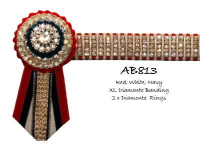 AB813