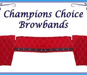 Padded Browband Covers