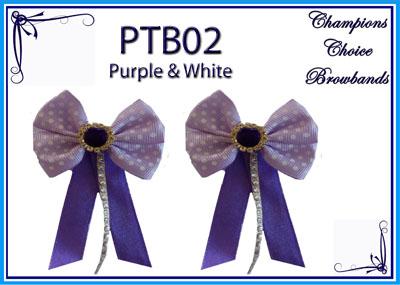PTB02