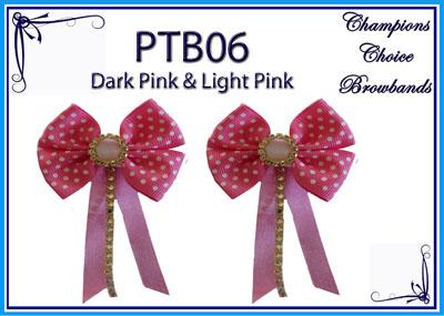 PTB06