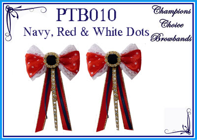PTB010