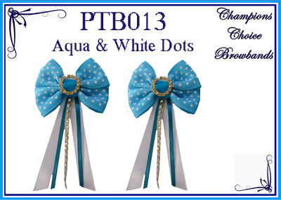 PTB013