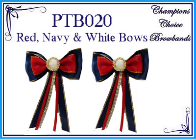 PTB020