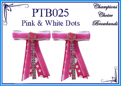 PTB025
