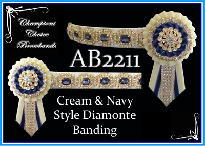 AB2211