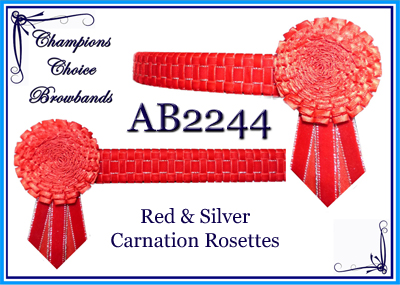 AB2244