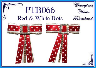 PTB066