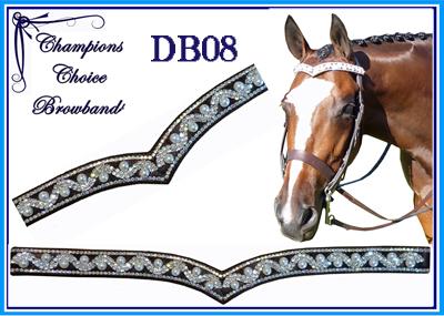 DB008
