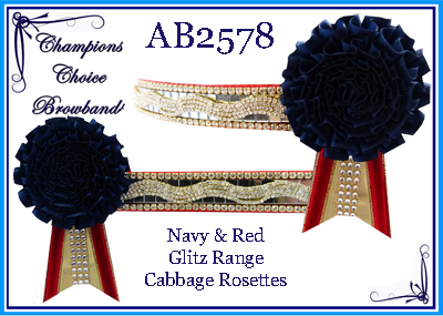 AB2578