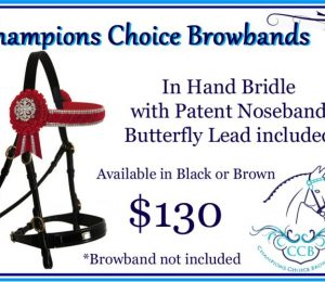 Bridles / Accessories