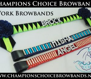 Work Browbands