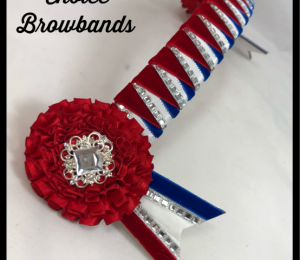NEW Diamontie Browbands